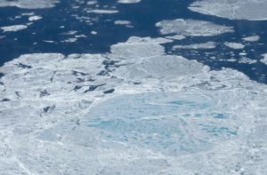 Melting sea ice is dangerous for so many reasons (Photo Credit: NASA)