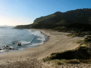 Ocean Beach, north of Bream Head, Northland, New Zealand (Photo Credit: gadfium, via Wikimedia Commons).